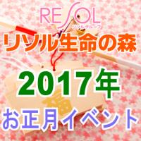 resol-shogatsu