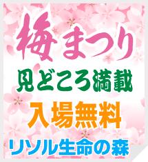 top-banner_201702-03
